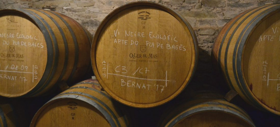 Ecological Wines Maturing In The Castle's Cellars
